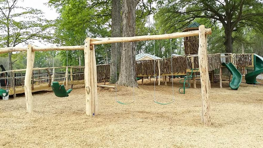 Locust Log Swing Set