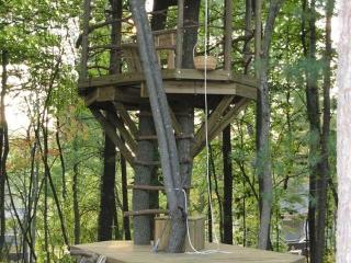 Double Decker Tree Fort