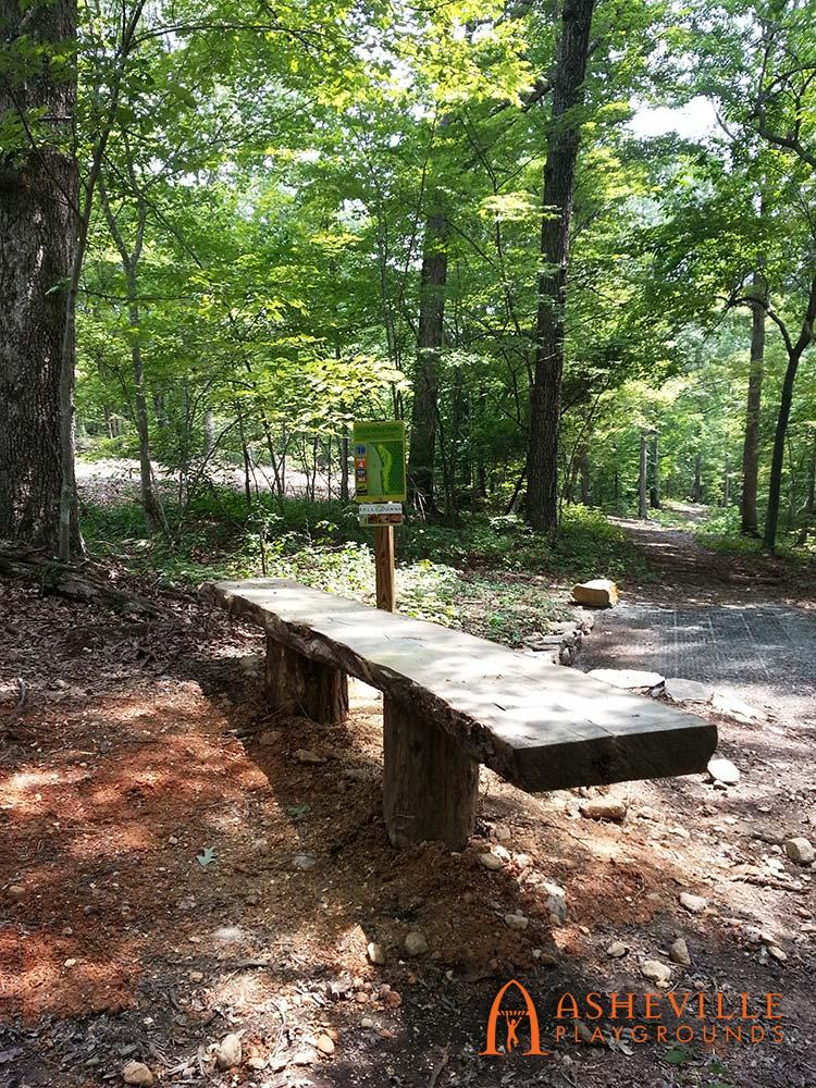 Locust Bench Close Up Rock Ridge Park Disc Golf Course