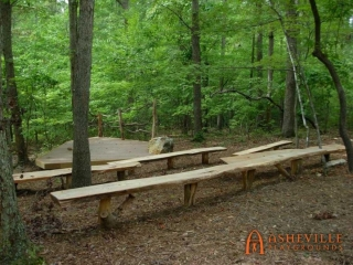 One of a Kind Live Edge Amphitheater Seating