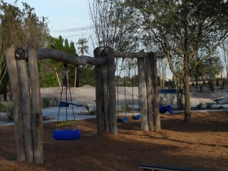Bexley Park 5 Tire Swing and Swing Set